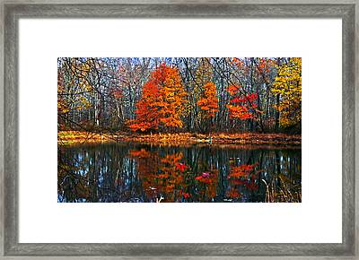 Fall Colors On Small Pond Framed Print