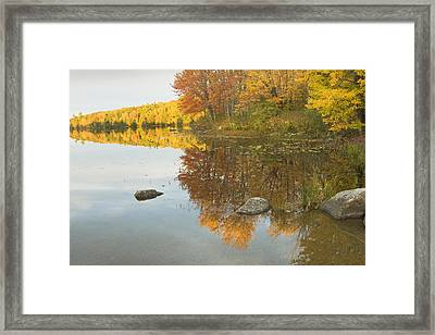 Fall Colors On Taylor Pond Mount Vernon Maine Framed Print