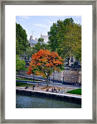 Fall Colors On The Seine Framed Print by Matt MacMillan