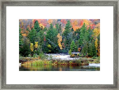 Fall Colors On The  Tahquamenon River   Framed Print by Optical Playground By MP Ray