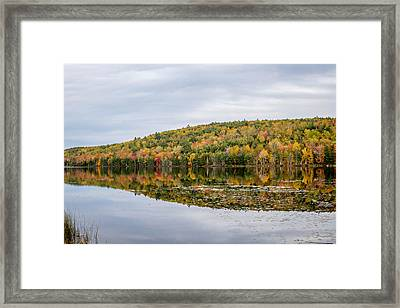 Framed Print featuring the photograph Fall Colors  by Trace Kittrell
