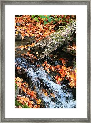 Framed Print featuring the photograph Fall Creek by Alicia Knust