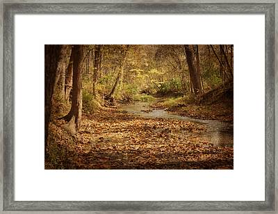 Fall Creek Framed Print