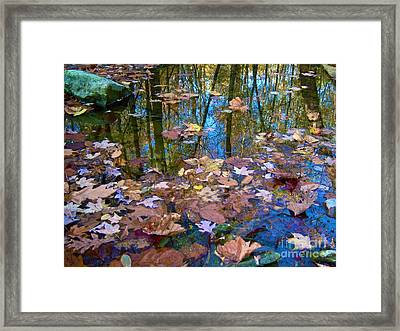 Fall Creek Framed Print by Pamela Clements