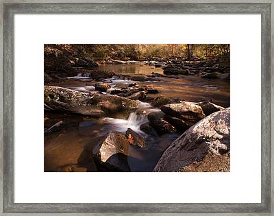 Framed Print featuring the photograph Fall Creek by Rebecca Hiatt