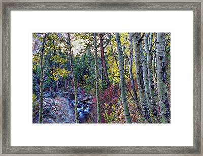 Fall Creek Framed Print by Scott McGuire