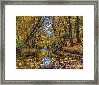 Fall Creek Framed Print by Tim Buisman