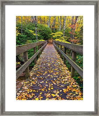 Fall Crossing Framed Print by Anthony Heflin