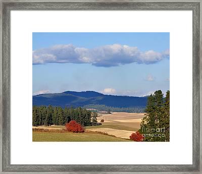 Fall Day On Fiddlers Ridge Framed Print