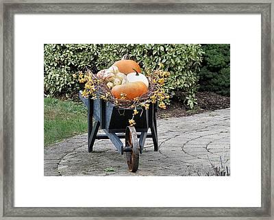 Fall Decorated Wheelbarrow  Framed Print