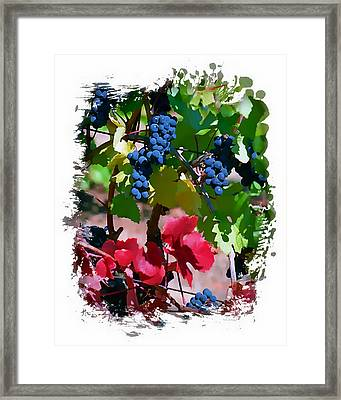 Fall Delight II Framed Print by Ken Evans