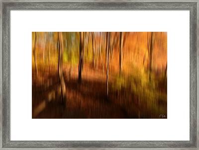 Fall Divine Framed Print