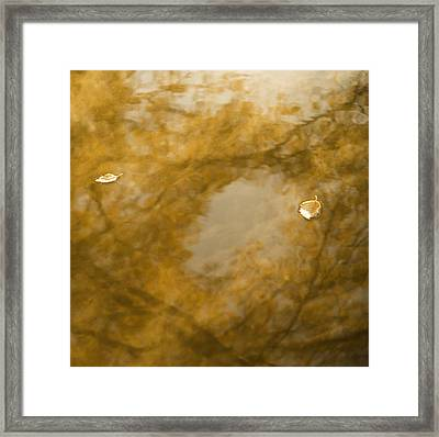 Fall Dream Mirror Framed Print