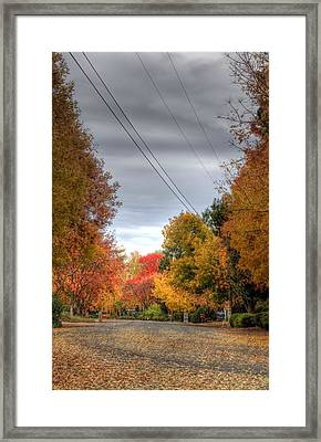 Fall Drive Framed Print by Ren Alber
