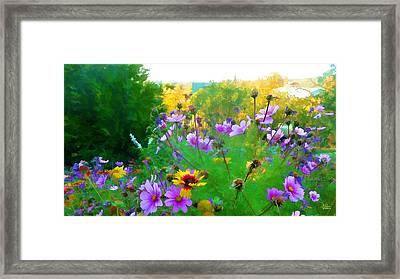 Fall Enters The Garden No 2 Framed Print