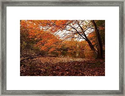 Fall Escape Framed Print by Lourry Legarde