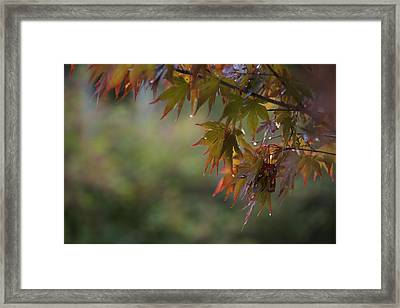 Fall Fantasy Framed Print by Jane Eleanor Nicholas