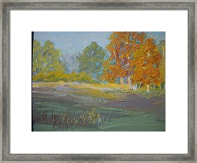 Fall Field Framed Print