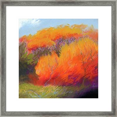 Fall Fire Framed Print by Bruce Richardson