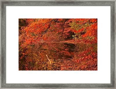 Fall Flavor Framed Print
