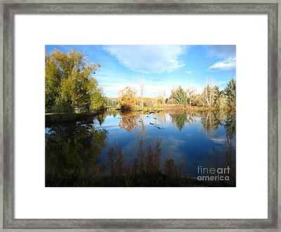 Fall Flight Reflected Framed Print