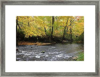 Fall Flow Framed Print