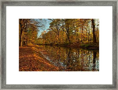 Fall Foliage Along The Delaware Canal Framed Print by Adam Jewell