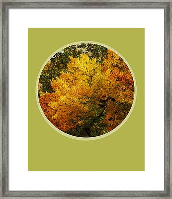 Fall Foliage Framed Print by Ann Powell