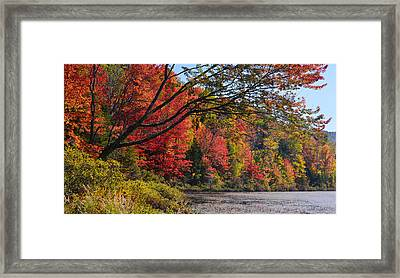 Fall Foliage At Elbow Pond Framed Print