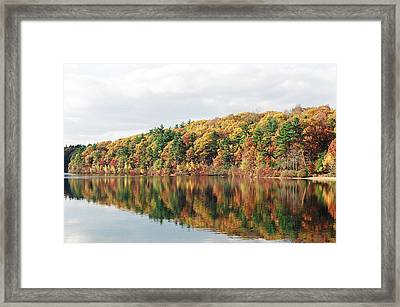 Fall Foliage At Walden Pond Framed Print by John Sarnie