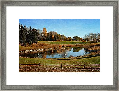 Fall Foliage Colors Framed Print by  Maria Angelica Maira