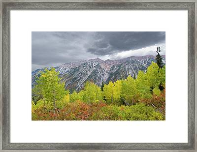 Fall Foliage In Little Cottonwood Framed Print