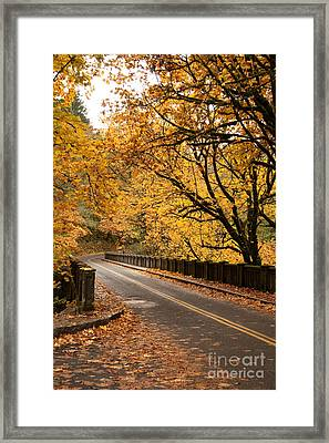 Fall Foliage On The Highway Framed Print by Cari Gesch