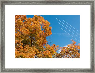 Fall Foliage With Jet Planes Framed Print