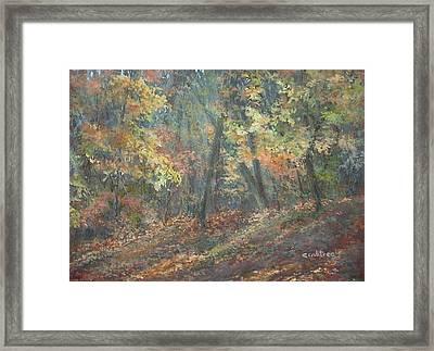 Fall Forest Framed Print by Elizabeth Crabtree