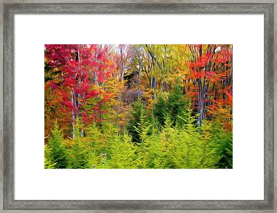 Fall Forest Foliage Framed Print by Lanjee Chee