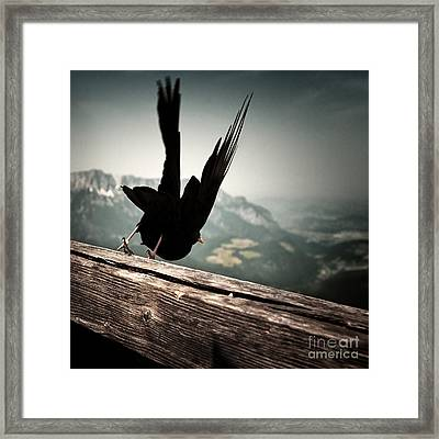 Fall From Eagle's Nest Framed Print