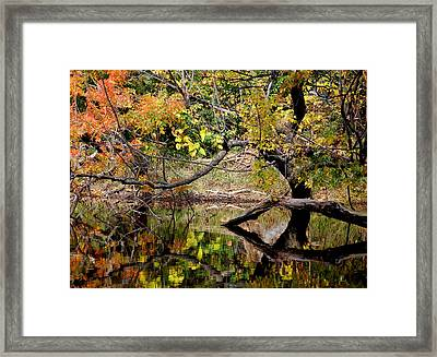 Fall From The Water Framed Print