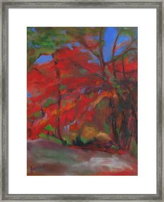 Fall Fusion Framed Print by Susan Hanlon