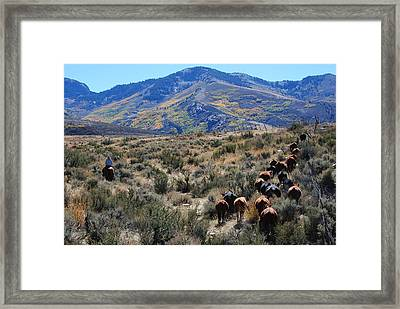 Fall Gather Framed Print by Lee Raine