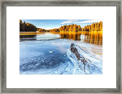 Fall Gives Way To Winter Framed Print by Evgeni Dinev