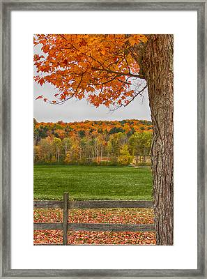 Fall Glow Framed Print by Nathan Larson