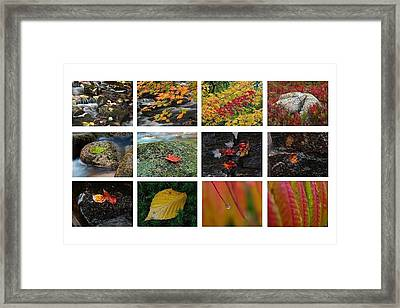 Fall Greetings Framed Print by Juergen Roth