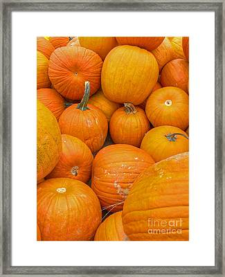 Framed Print featuring the photograph Fall Harvest by ELDavis Photography