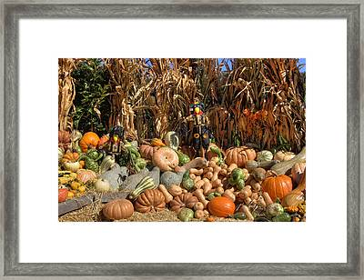 Fall Harvest Framed Print by Joann Vitali