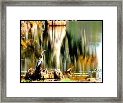 Fall Has Come Framed Print
