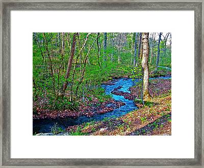 Fall Hollow On Mile 391 Of Natchez Trace Parkway-tenneessee Framed Print by Ruth Hager