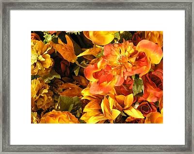 Fall In Bloom Framed Print