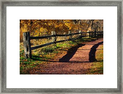 Fall In Chicago Framed Print