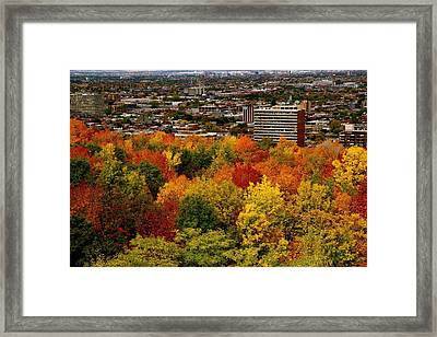 Fall In Colors 1 Framed Print by Jocelyne Choquette